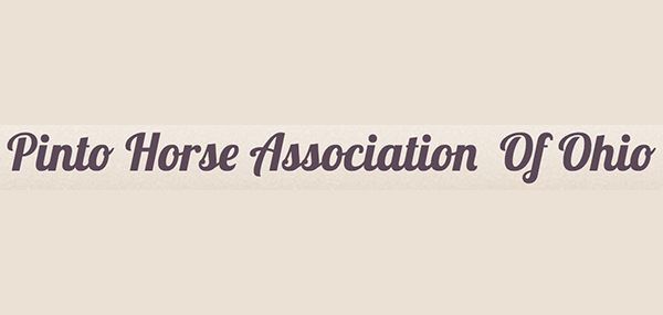 Pinto Horse Association of Ohio